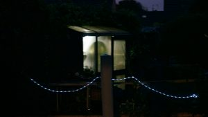 The prodeli solar light in my shed