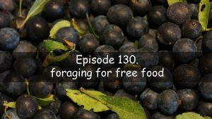 The veg grower podcast episode 130. Foraging for free food.