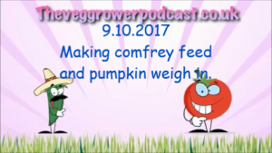 video dated 9.10.2017 making comfrey feed and pumpkin weigh in