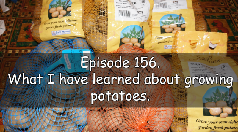 Join me in episode 156 where I share the latest on the plots and what I havelearned about potatoes.