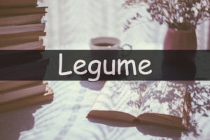 Its the time of the week to look at my understanding of a horticultural word or term. This week I am looking at the word legume.