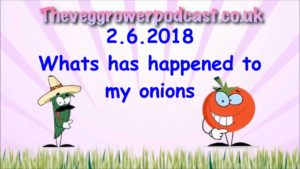 This week's video from the veg grower podcast I appear to have a problem with my onions.