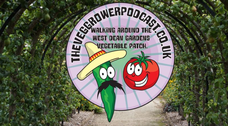 Join me as the bald explorer and I explore West dean's walled vegetable patch.