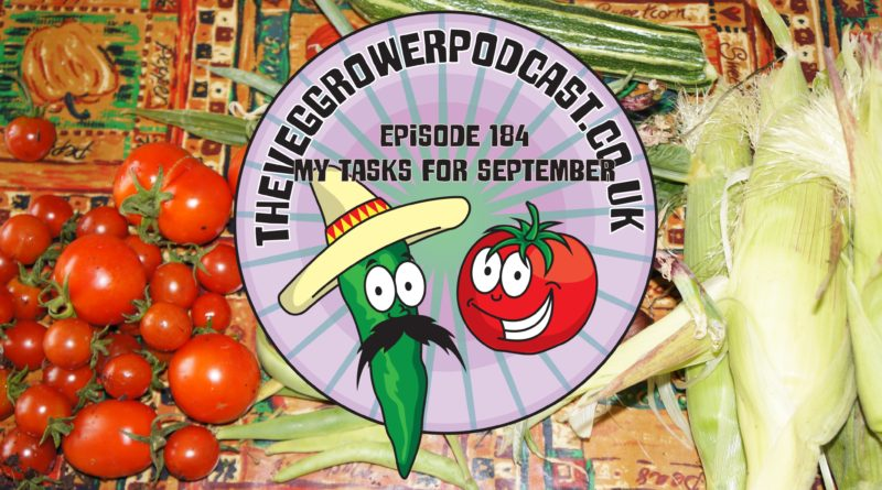 Join me in this podcast where I discuss my gardening tasks for September. I also share the latest on the allotment and vegetable patch.