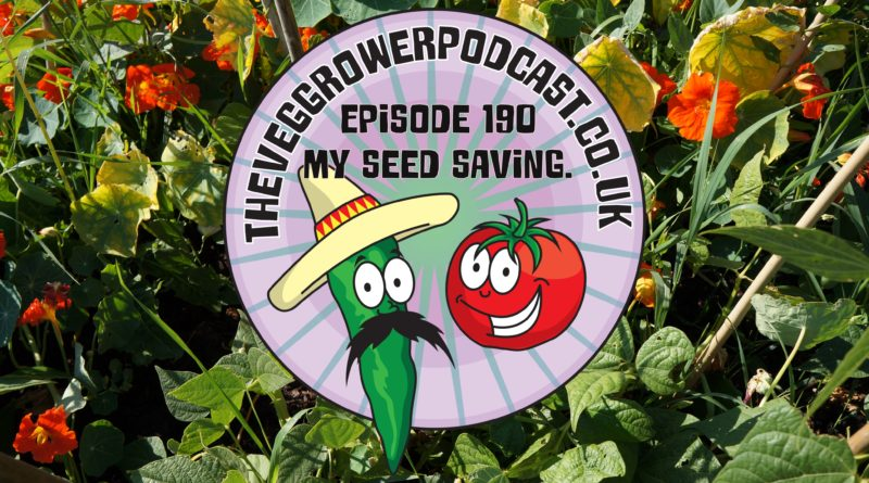 Join me in this weeks podcast where I discuss my seed saving experience. I also share the latest on the allotment and vegetable pots