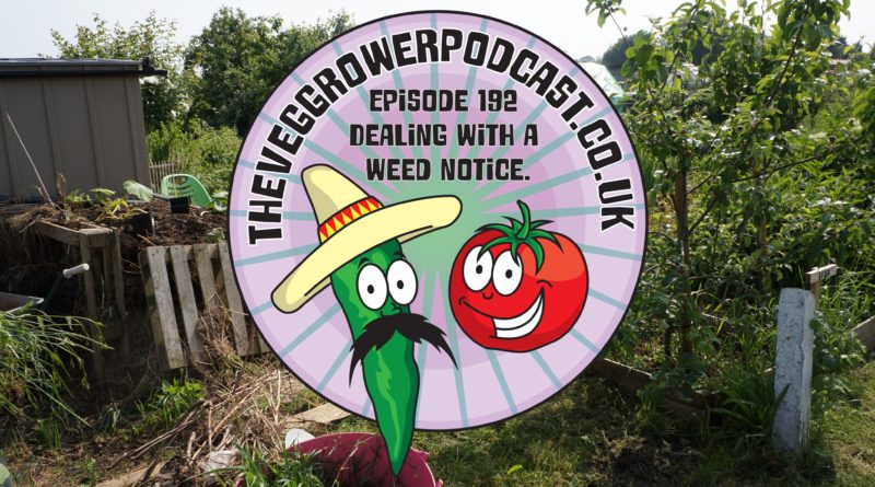 Join me in this week's vegetable gardening podcast where I'll be discussing how to deal with a weed notice and a little eBook from Thompson and Morgan I also have the latest on the allotments and vegetable patch.
