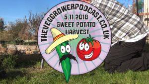 In this weeks video I am harvesting my sweet potatoes.