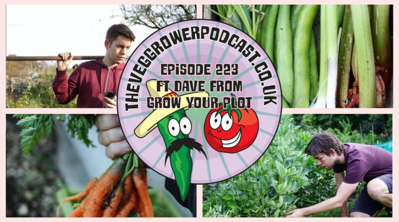 Join me in this weeks vegetable gardening podcast where I have met up with Dave from grow your plot. I also share the latest from the plots