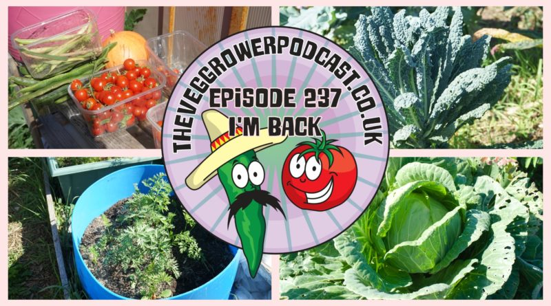 I'm back with the podcast after a couple of weeks off. In this podcast find out what I have been up to on may allotment andf vegetable patch recently.