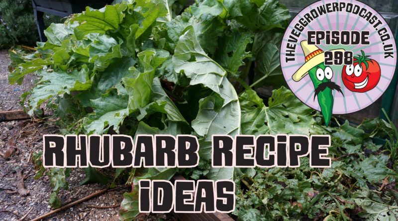 Join me in today's podcast where I share a few Rhubarb recipe ideas I have for using up gluts of rhubarb. I also share the latest from the plots.