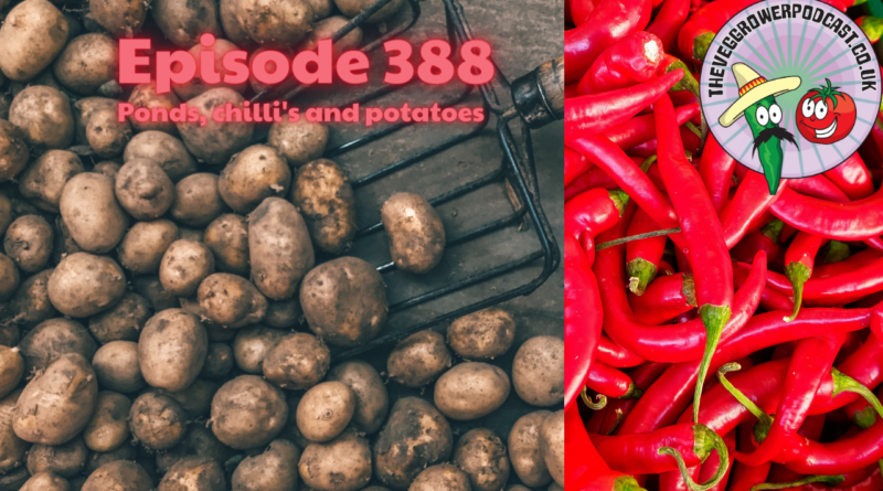 Join me in this weeks podcast where I answer a question about ponds, A question about growing chilli's and share how I grow potatoes. I also share the latest from my plots.